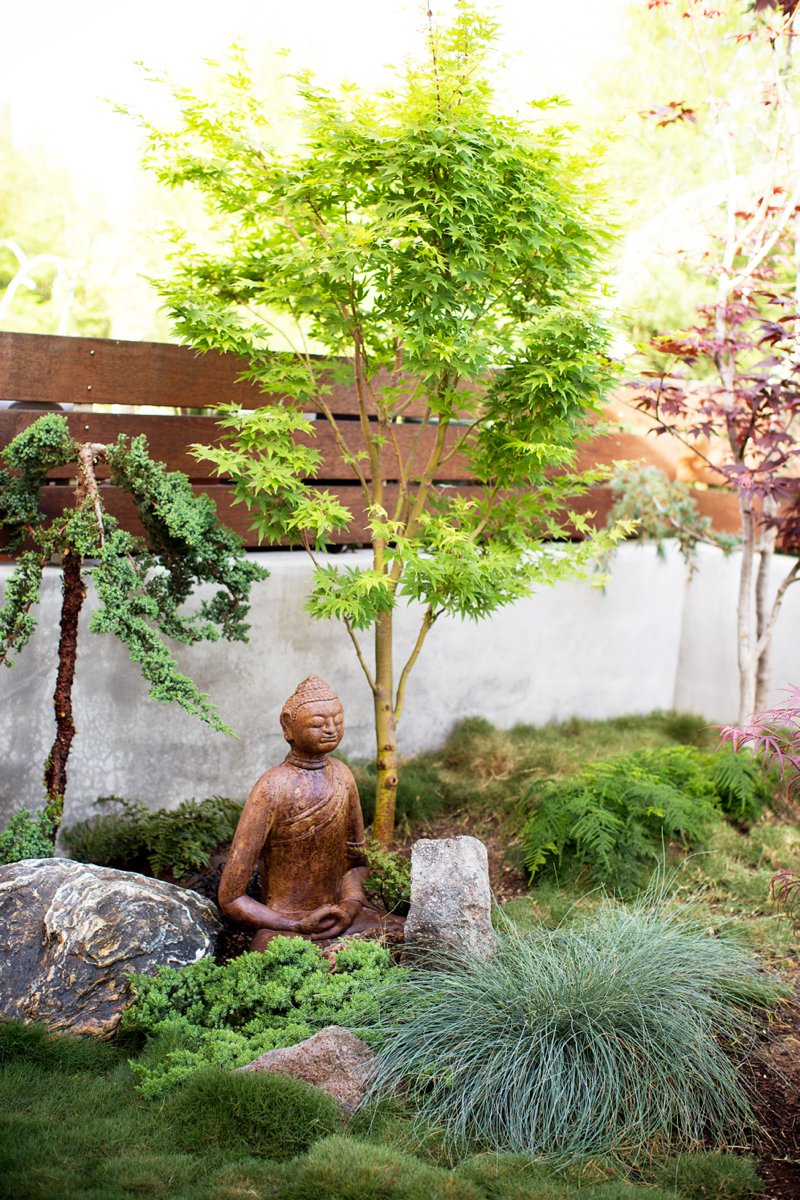 Backyard Zen Garden landscape design