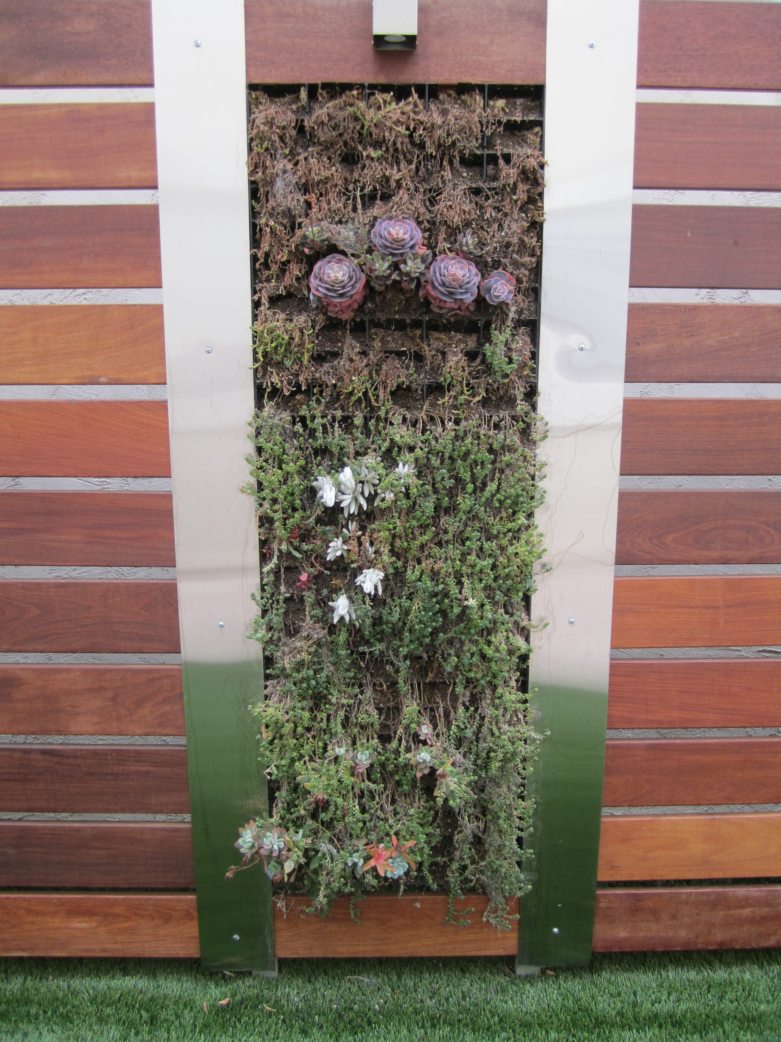 ugly-side-of-module-vertical-garden.JPG