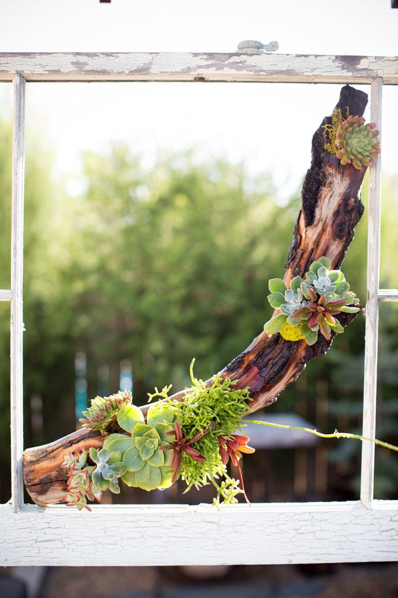 vertical-gardening-natural-driftwood-succulents.jpg