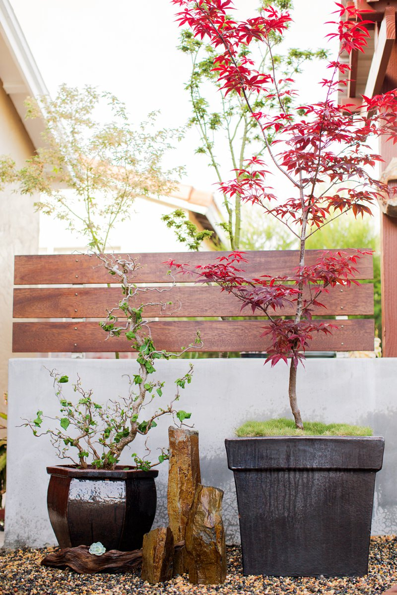 Zen garden container design