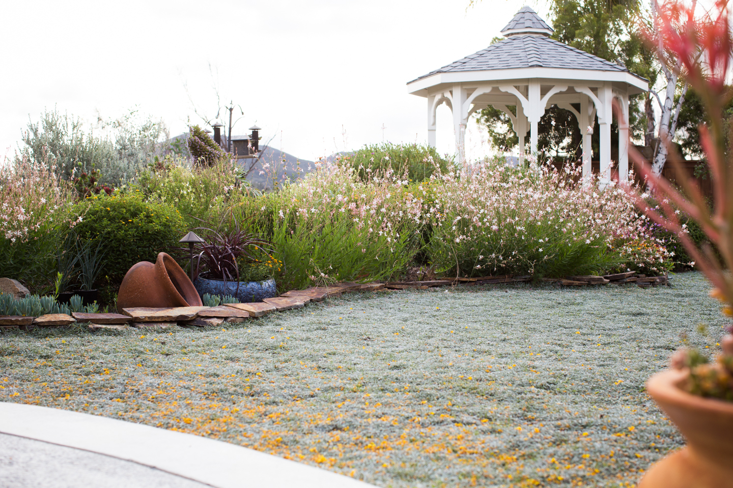 Xeriscape Lanscape Singing Gardens Small-26.jpg