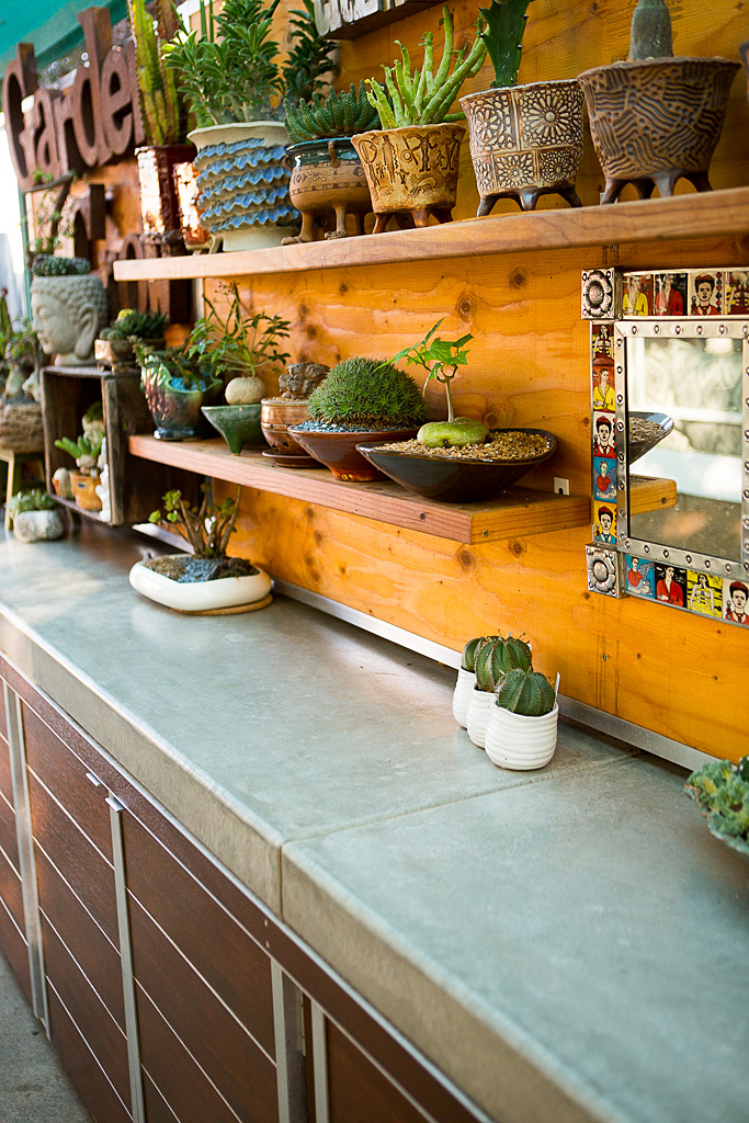 narrow space container garden cacti and succulents.jpg