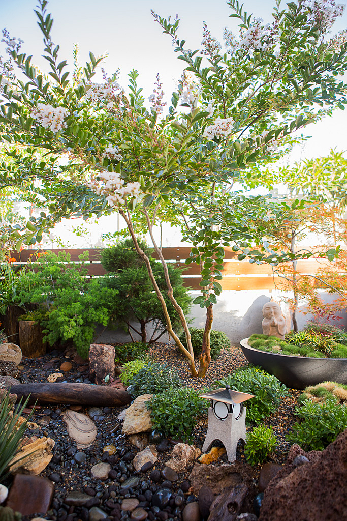 Backyard garden dry streambed idea