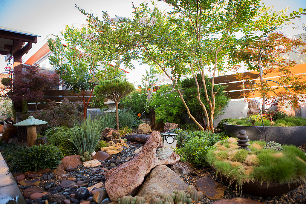 Backyard Zen garden landscaping design