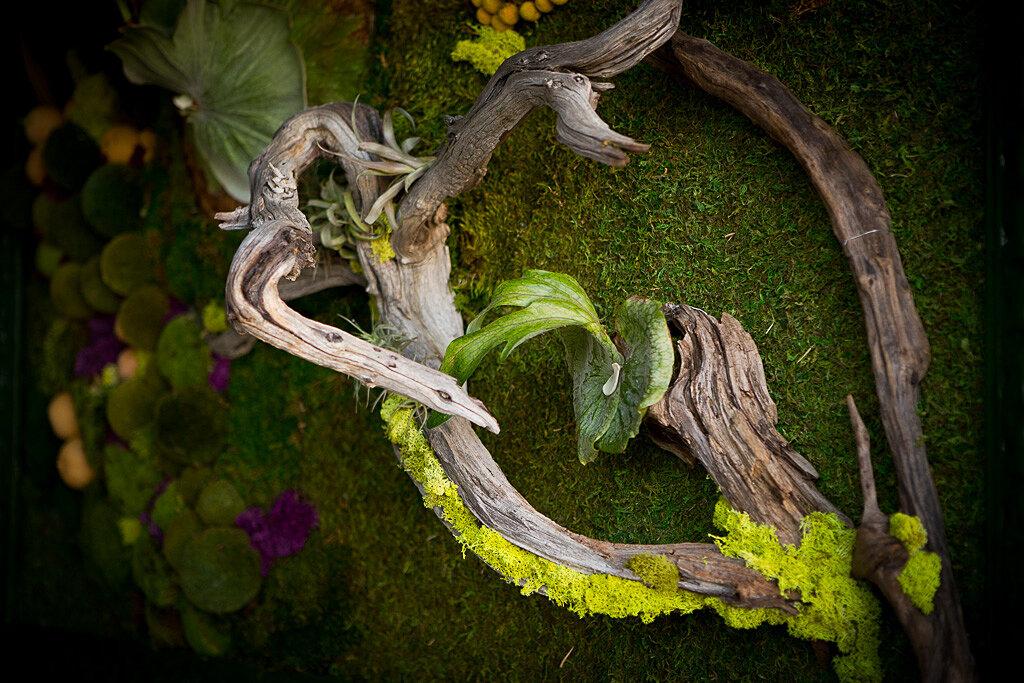 Singing Gardens Zen Garden Design Specialist Award Winning San