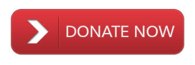 Donate now in red.jpg