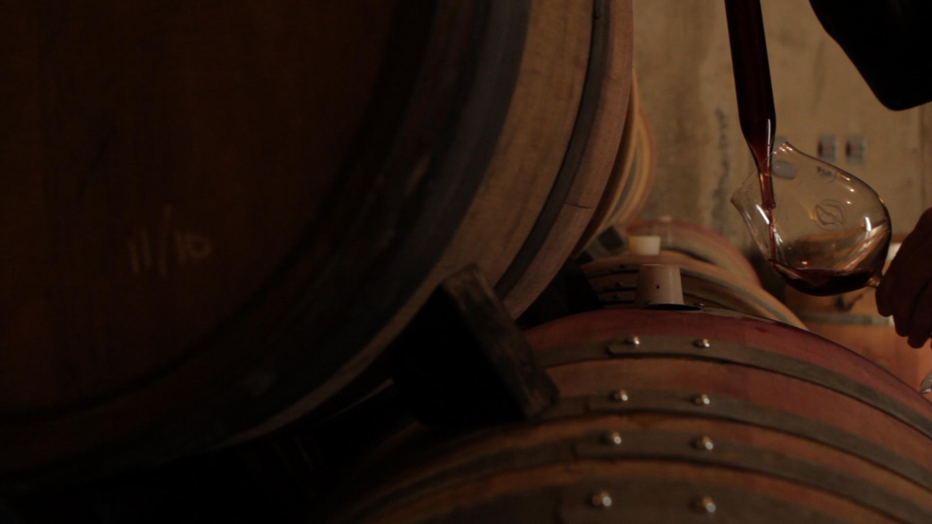 wine theif.jpg