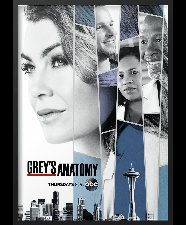 Image_Poster_Greys-Anatomy.png