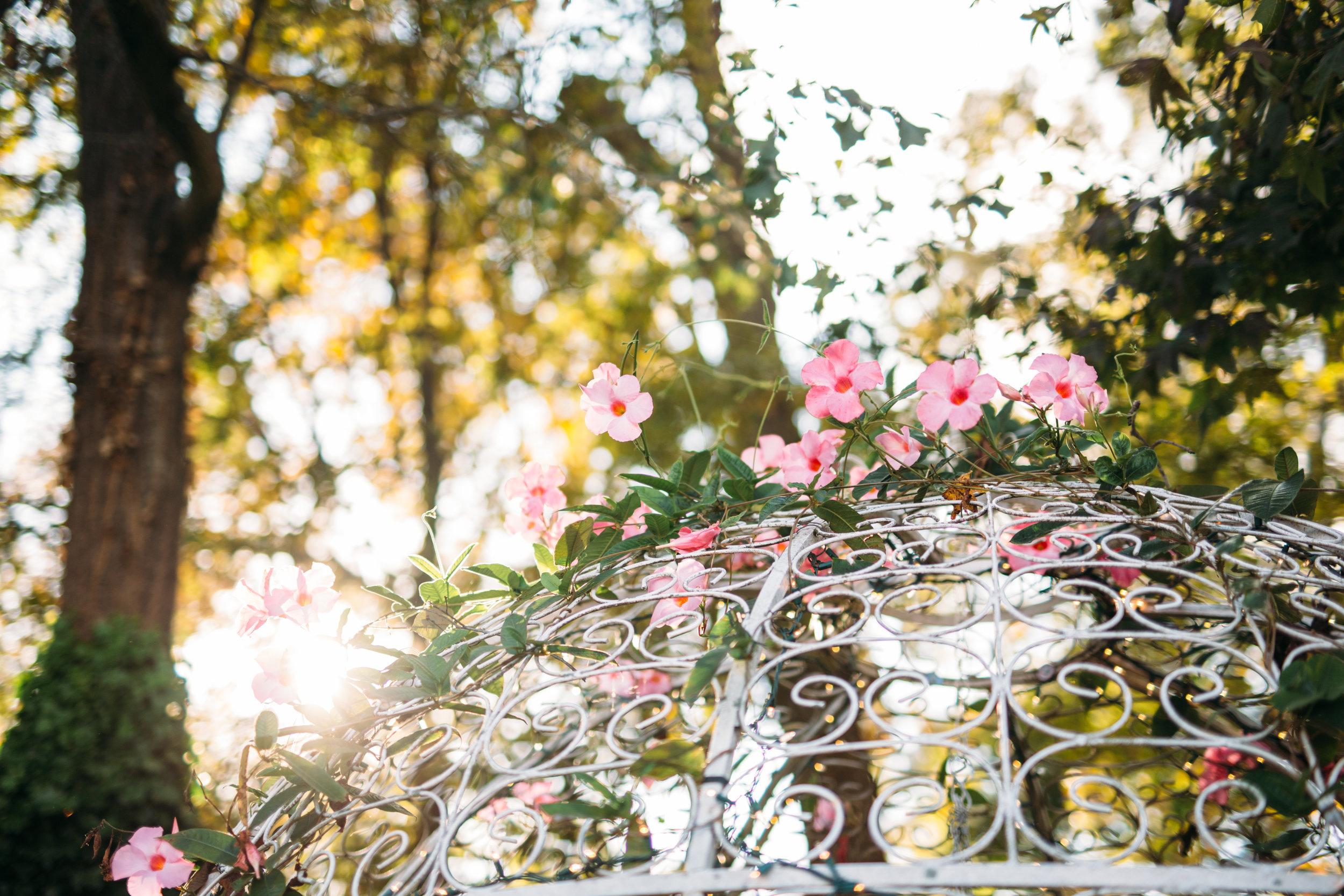 M & K Wedding-260.jpg