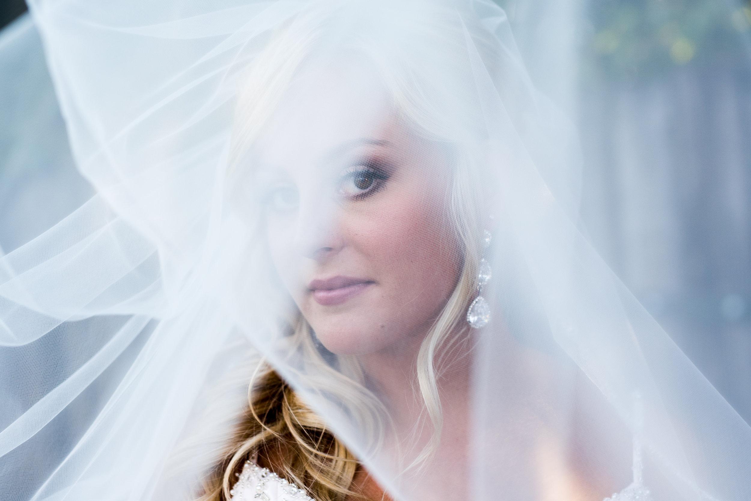 Bridal Veil Portrait By Brett Loves Elle Photography, Columbus Wedding Photographers.