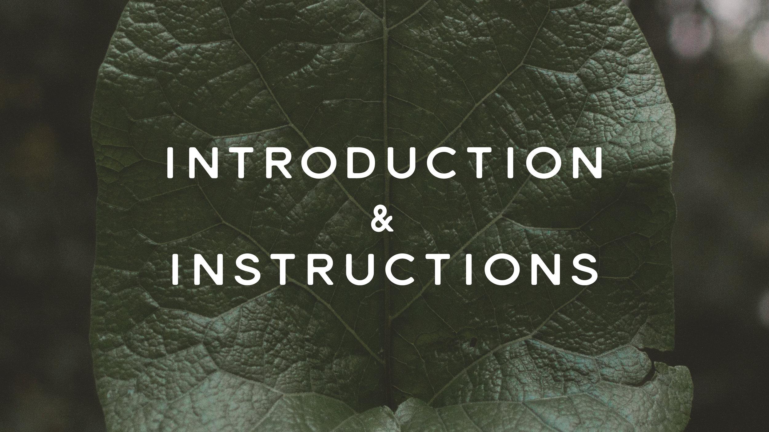 Introduction.jpg