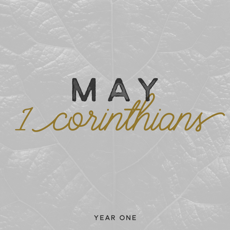 May Square.jpg