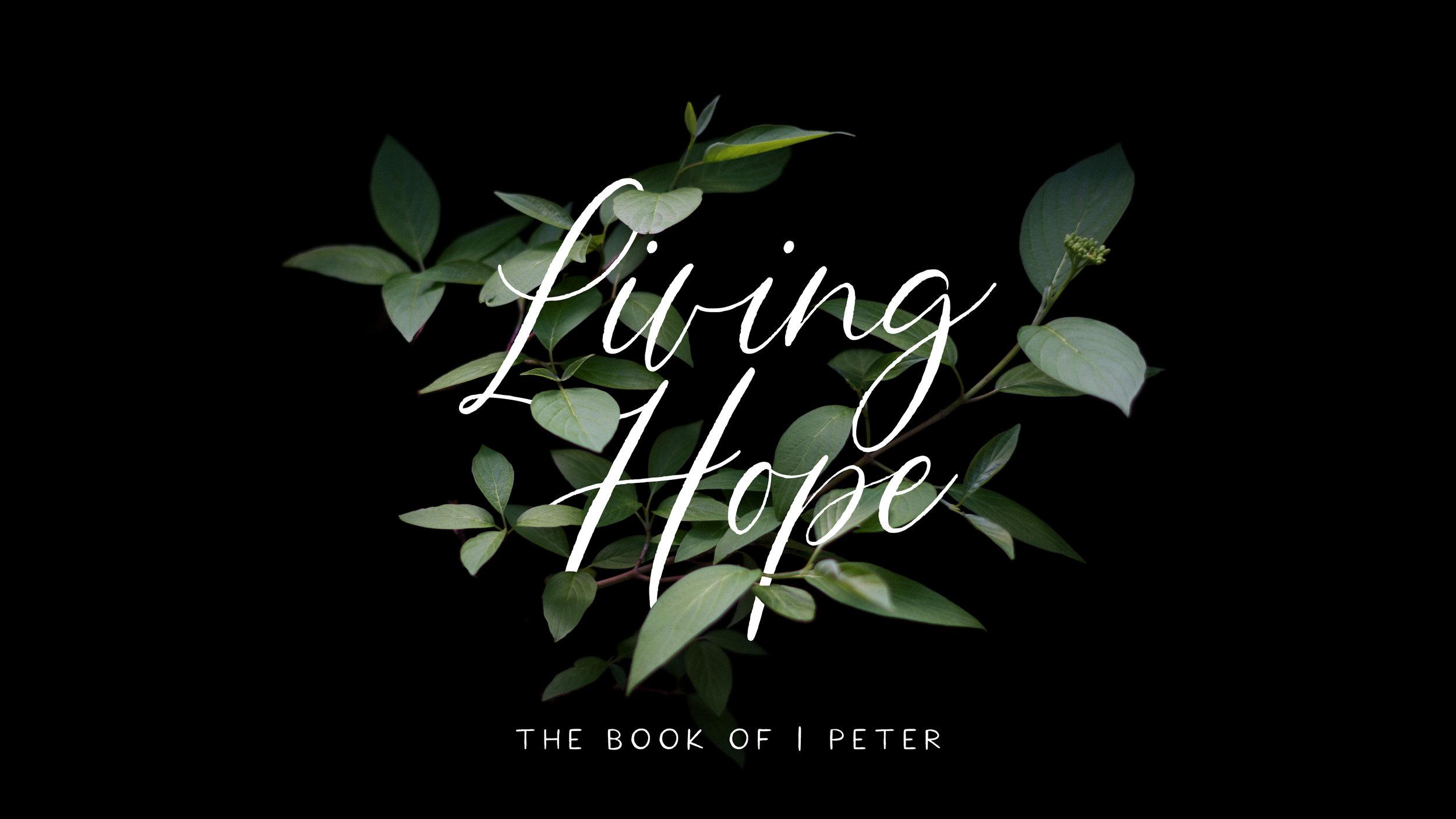 Living Hope Dark.jpg