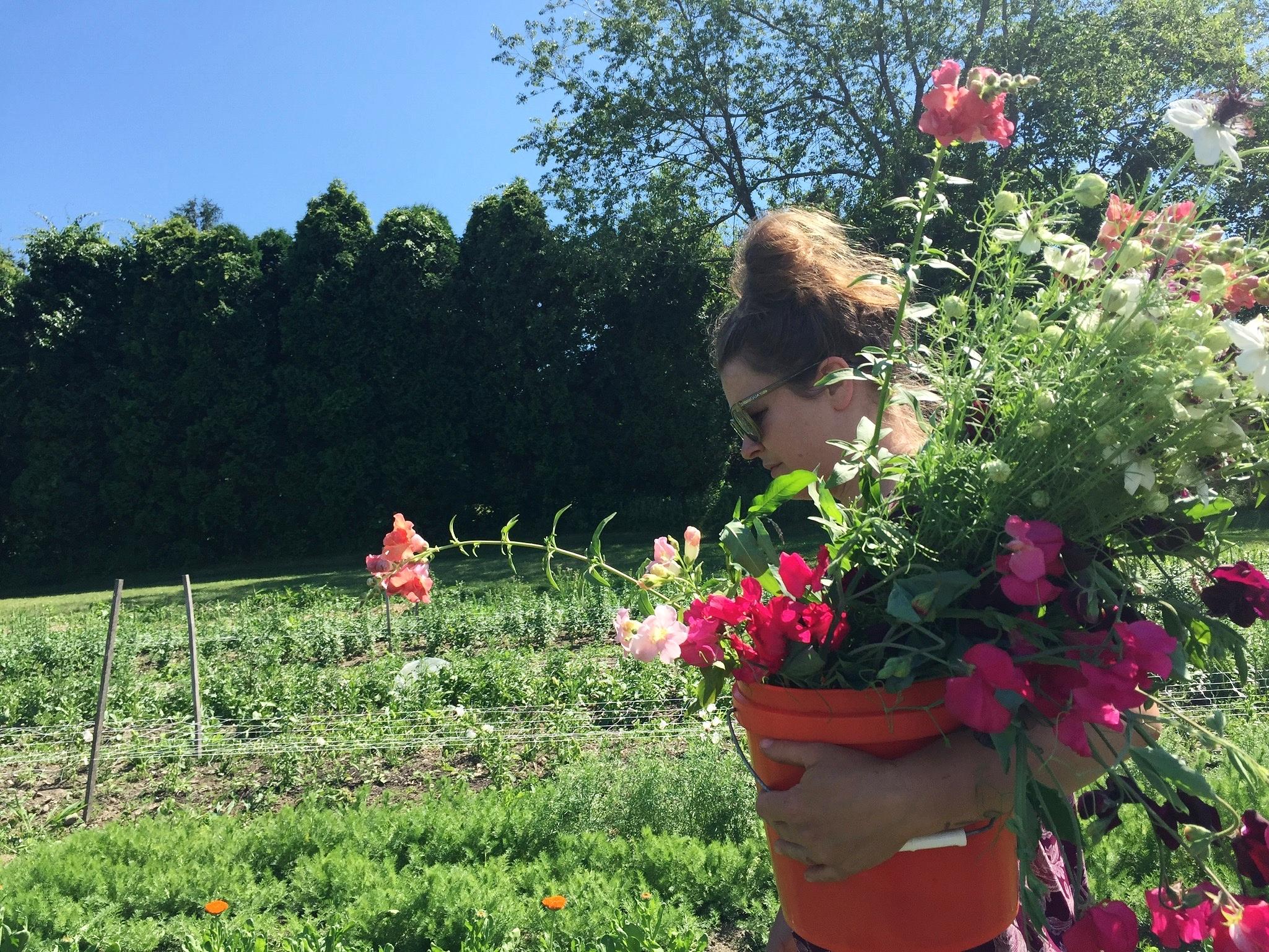 Anna Jane Kocon, owner of Little State Flower Farm