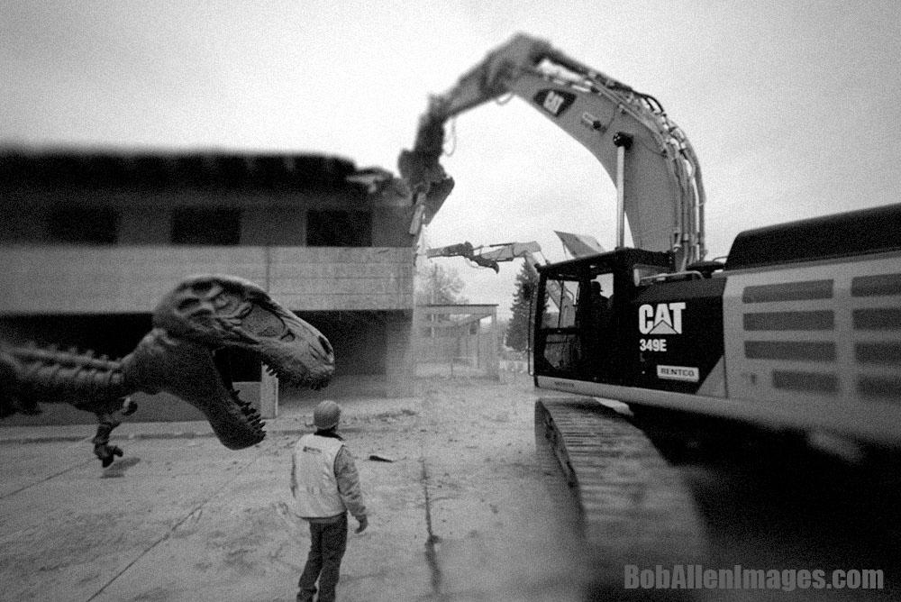 T-Rex vs. Diesel Cat