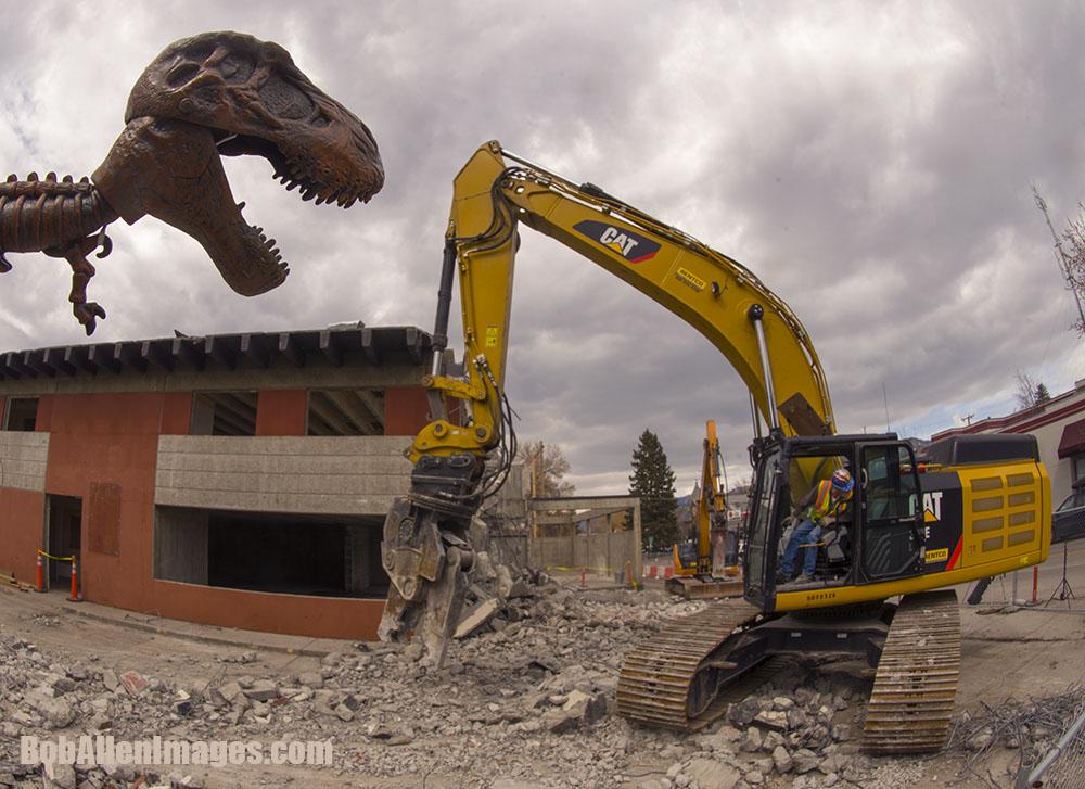 T-Rex beats Cat into submission. Impressive.