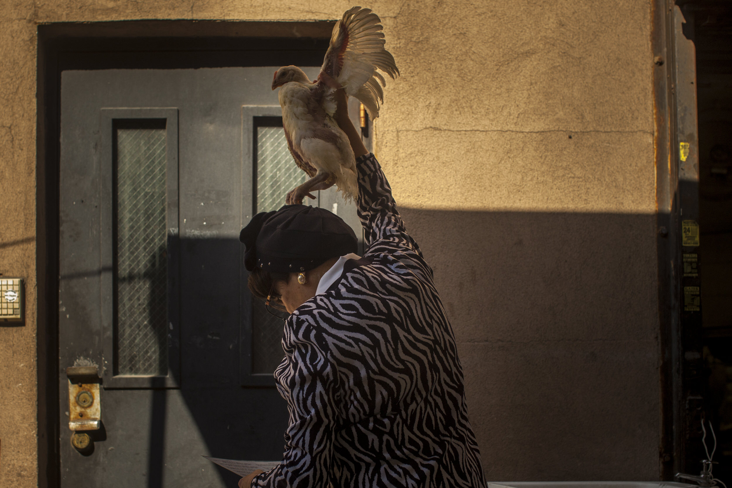 A Hasidic Jewish woman performs a penitential ritual, meant to transfer a person's sins to a chicken, in Williamsburg, Brooklyn.