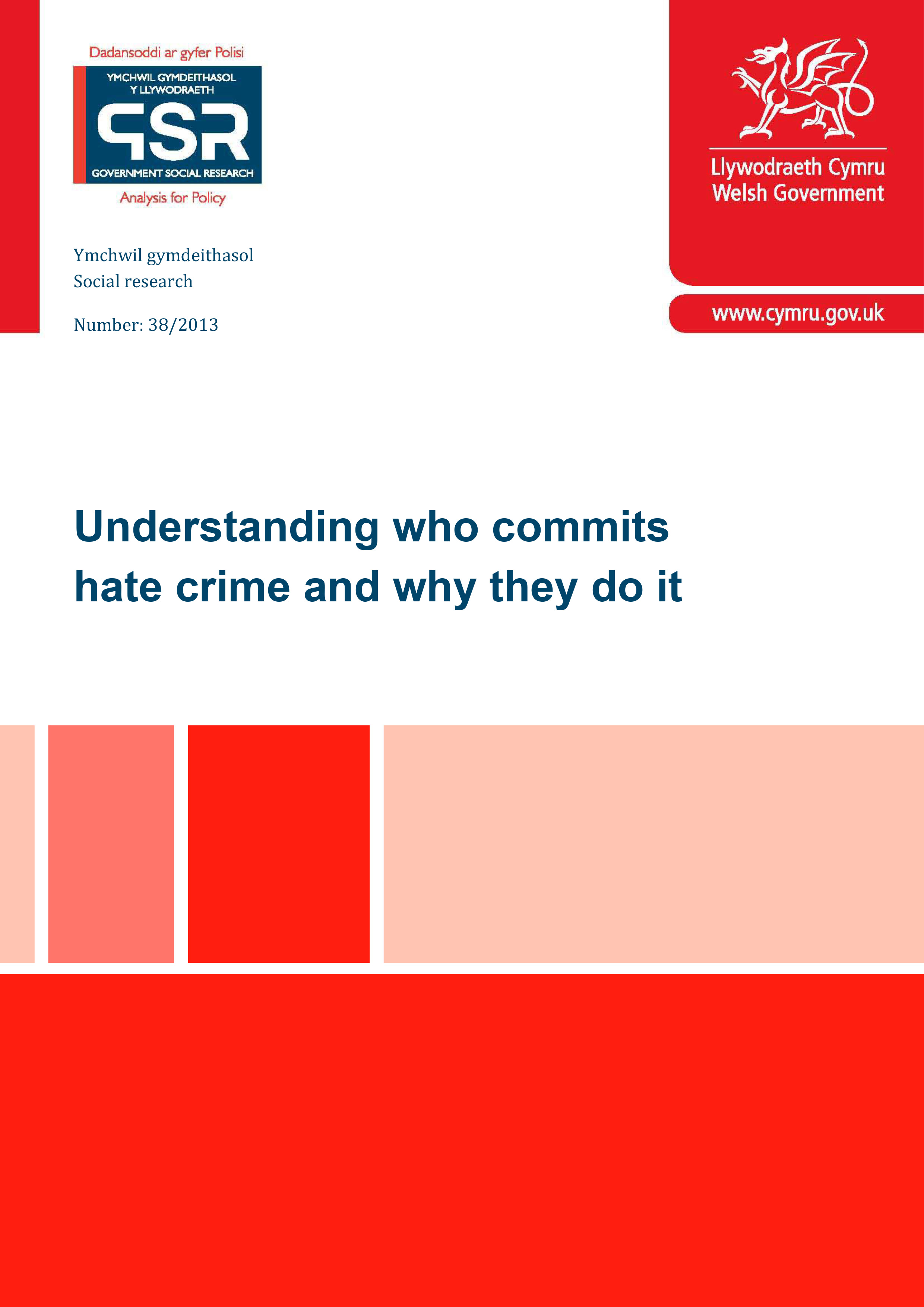 Understanding Who Commits Hate Crime & Why They Do It. A Report to the Welsh Government