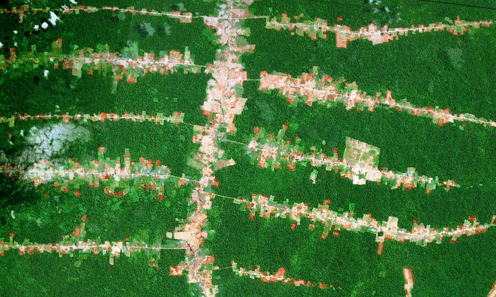 Roads to ruin... forest clearing in the Amazon