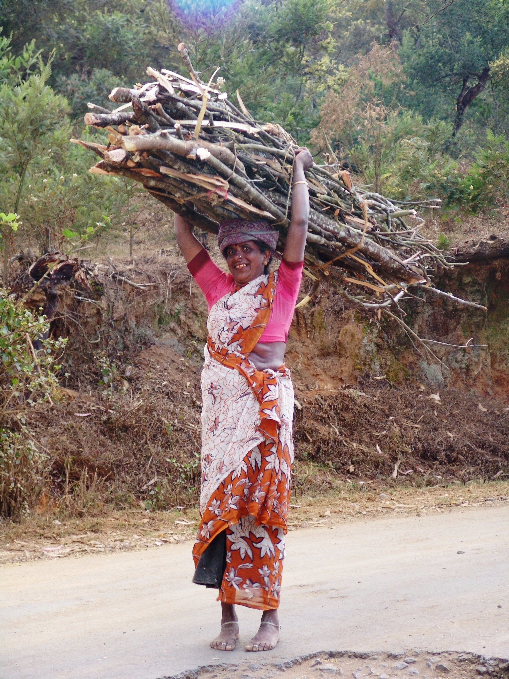 Parks under pressure... fuelwood harvesting in India (photo by William Laurance)