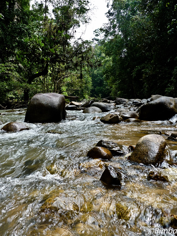 Selangor Park is a vital source of clean water for a large and growing populace (photo by Gopalasamy Reuben Clements)