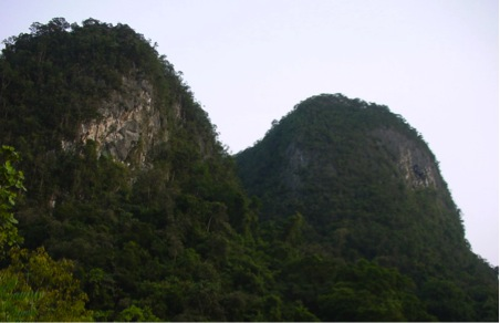 A limestone karst  (photo by Gopalasamy Reuben Clements)