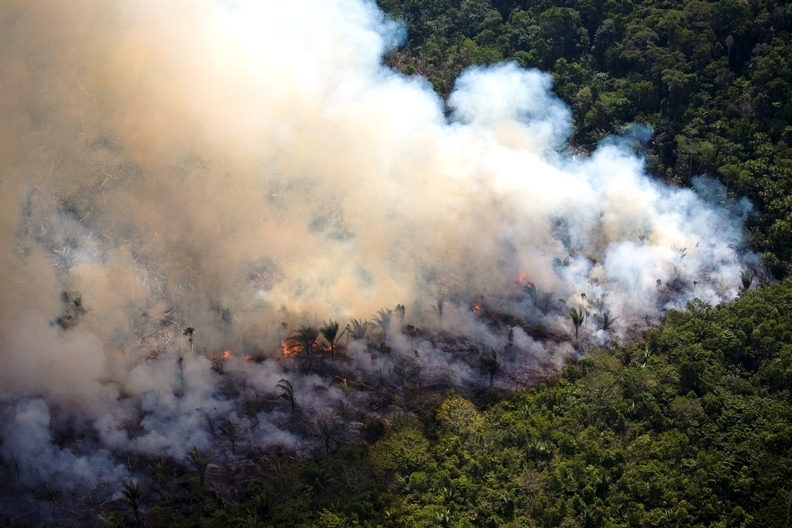 Amazon rainforest under assault