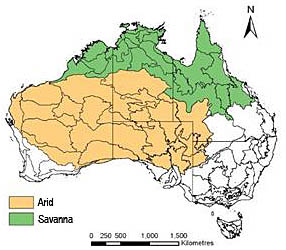 Vast expanses of northern Australia are dominated by tropical savannas.