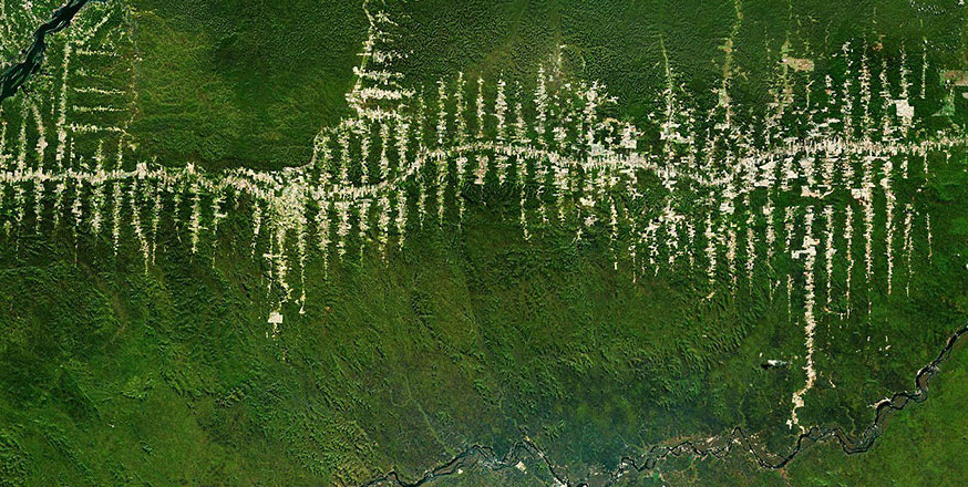 Roads slicing through the Amazon