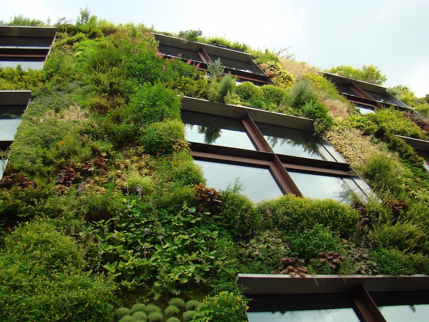 Appreciating nature in Paris, via creative architecture  (photo by Bill Laurance)