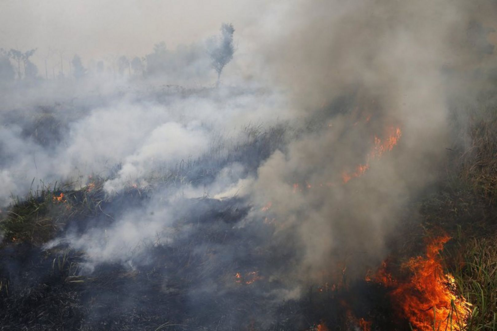 A 2015 peat fire in Sumatra, Indonesia