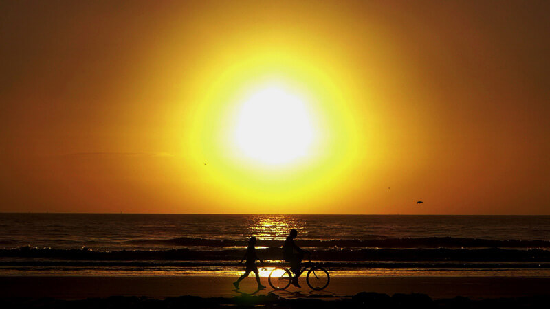 Like many other struggling species, humans could soon become poster children for global warming  (photo (c) Chris Martin/Flickr)       Cover image: African wild dogs in South Africa (c) bayazed/Shutterstock