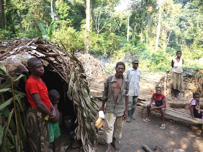 Pygmies.jpg