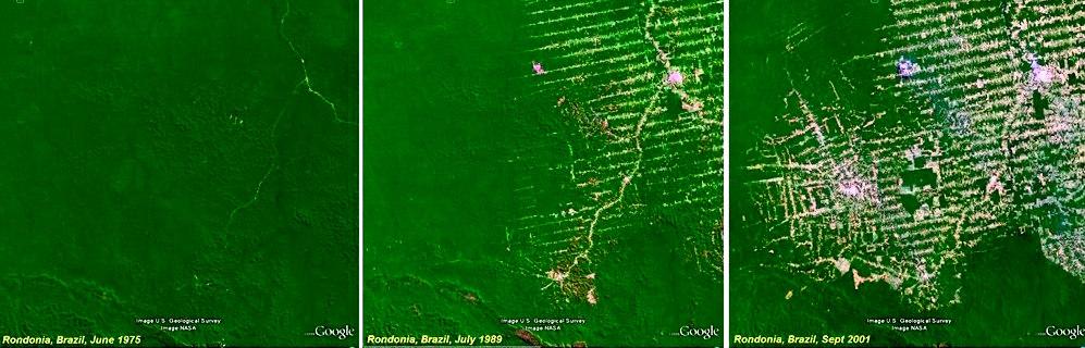 Deforestation-Rondonia-Landsat2.jpg
