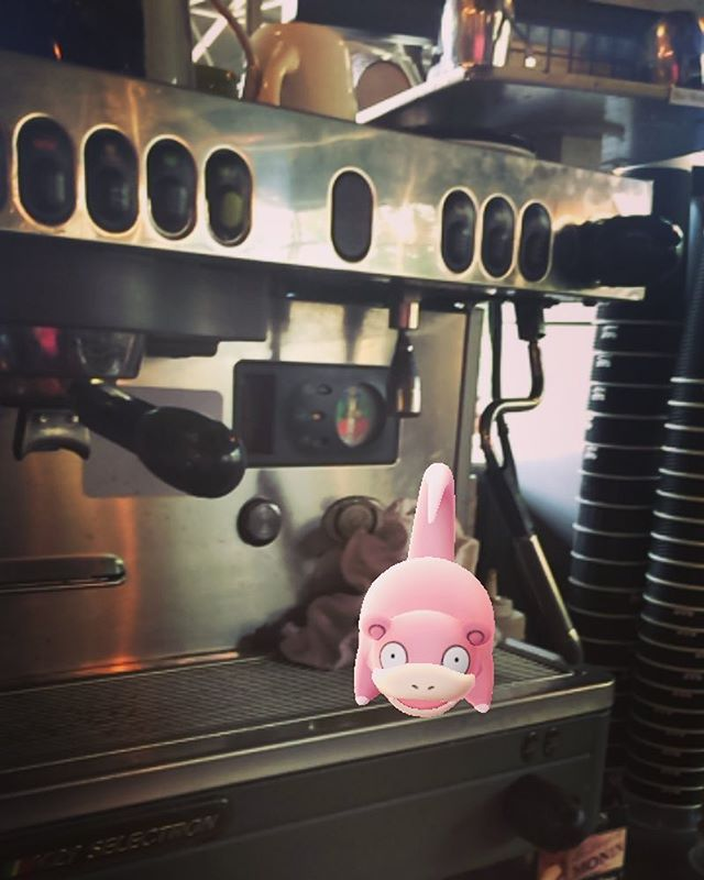 A wild Slowpoke showed up at the espresso bar earlier today... Must've needed a double shot #PokemonGo