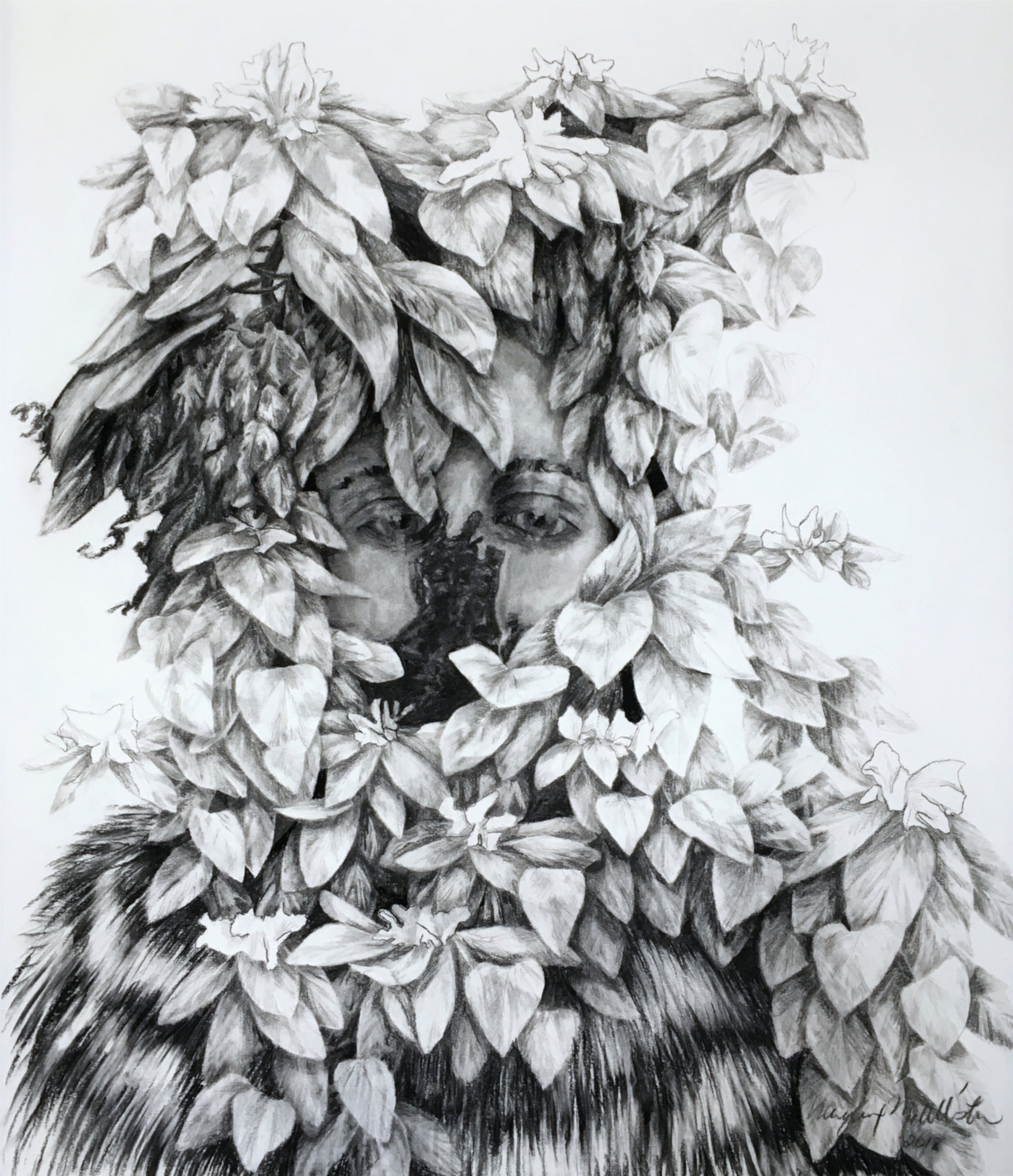 "Hide , charcoal and pencil on paper, 36"" x 42"", 2018."