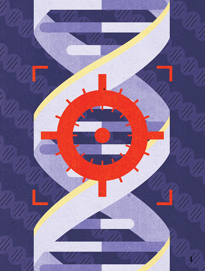 Project:  Right on target: New era of fast genetic engineering, 2013.  Client:  New Scientist