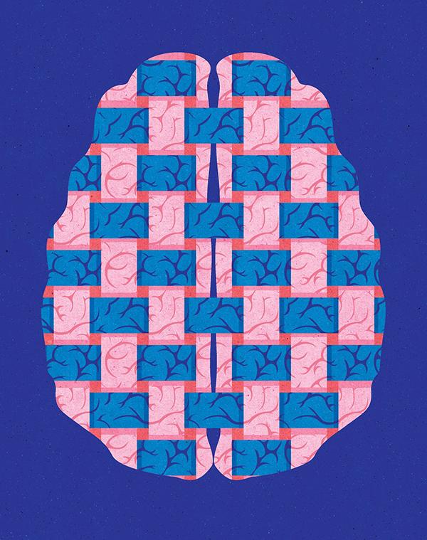 "Project:  Intersex Brain ( Is There a ""Female"" Brain?   Client: Scientific American, 2017"
