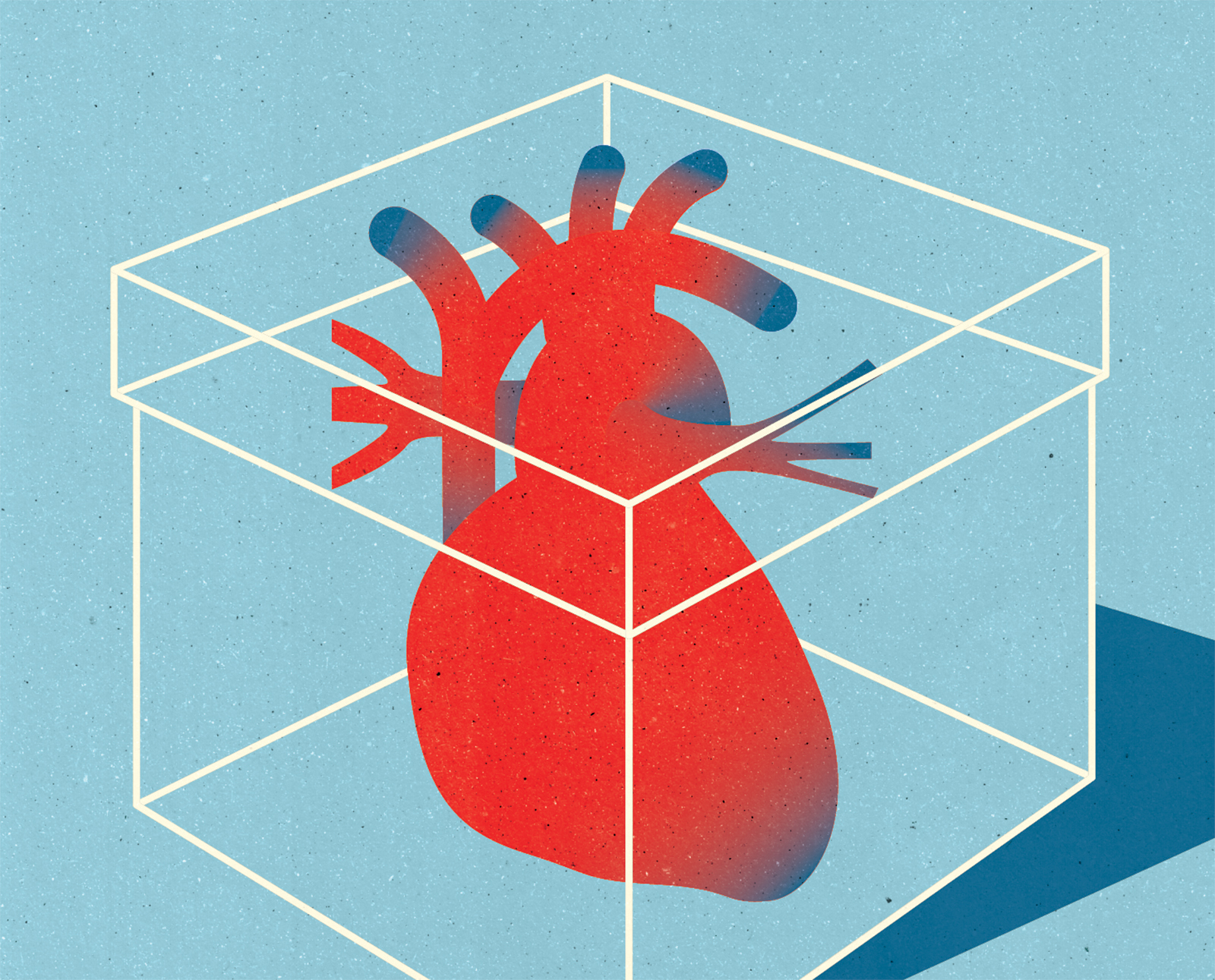 Project:    A new method makes it possible to transport and keep a heart from a donor about three times longer than before,    Client:    Forskning För Hälsa magazine by the Swedish Heart-Lung Foundation, 2017