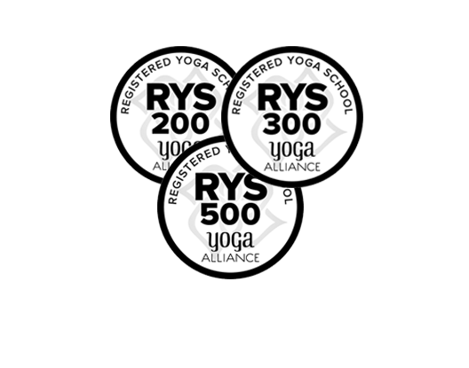 rys-200-&-rys-300.png