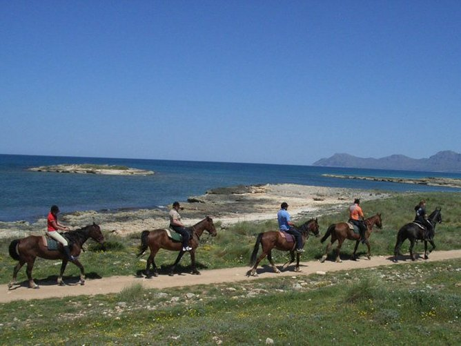 MajorcaYoga-beach-holidays-Majorca-Activities2018-9-Horse-Riding.jpg