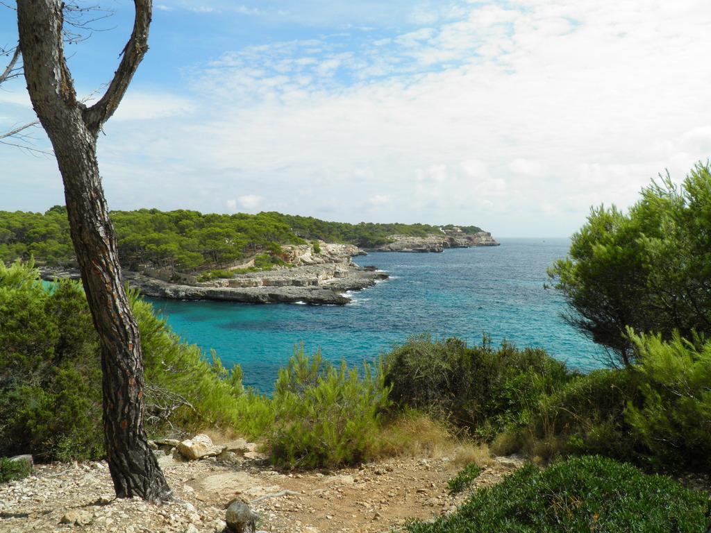 MajorcaYoga-beach-holidays-Majorca-Activities2018-13-Hiking.jpg