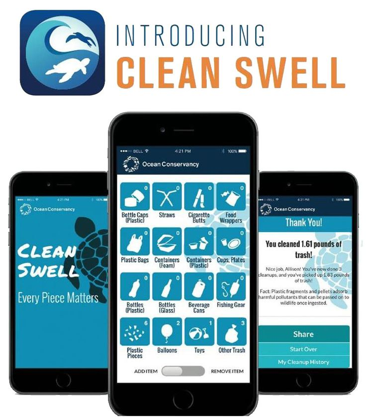 click to learn more about the Clean Swell App!
