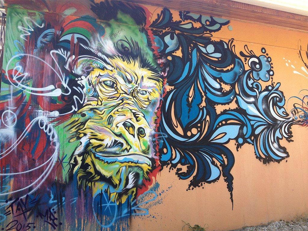 Santa Cruz artist Taylor Reinhold is our honored guest!