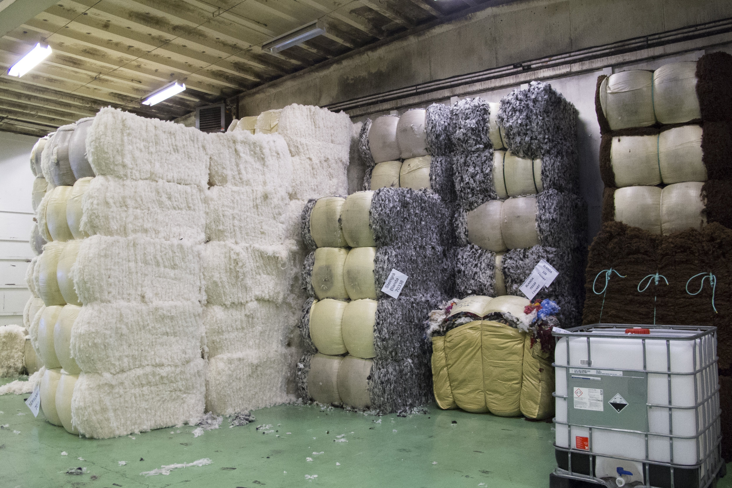 Washed fleece ready for processing