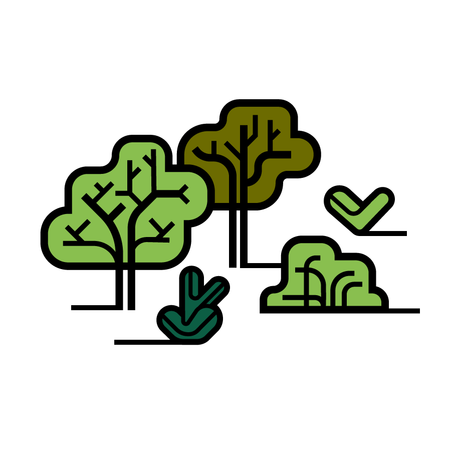 illo_trees_1.png