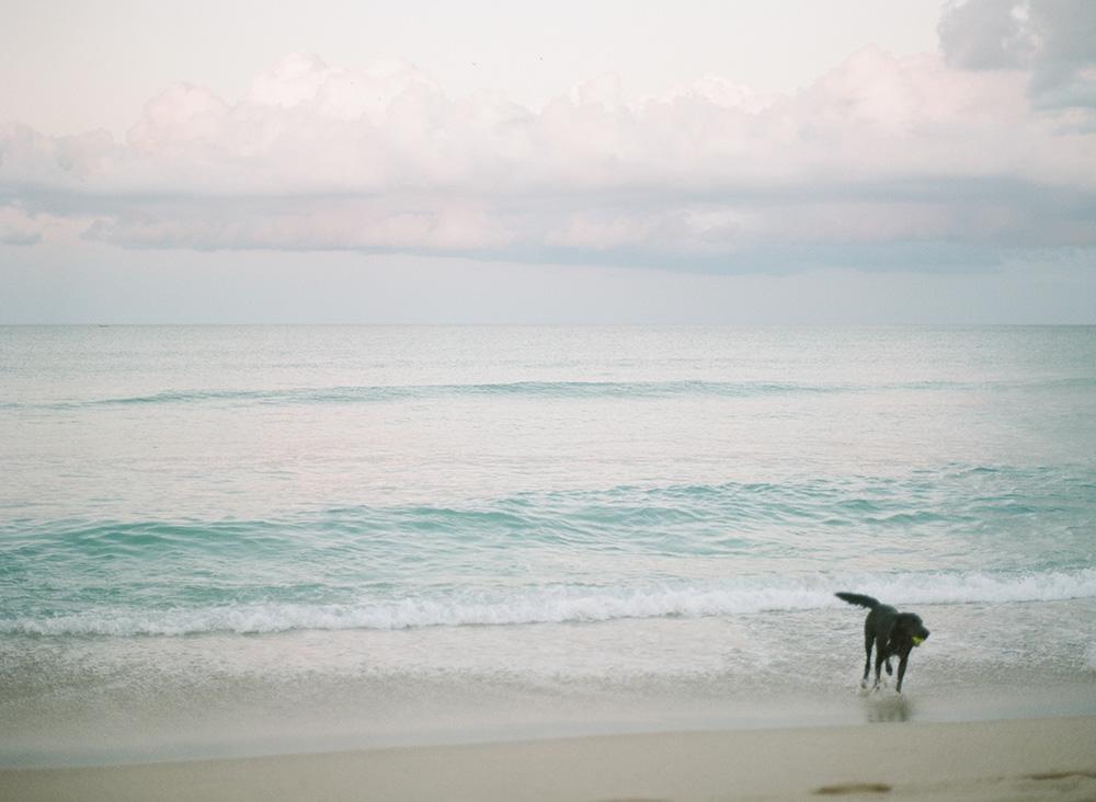 palm_beach_film_photographer_03.jpg