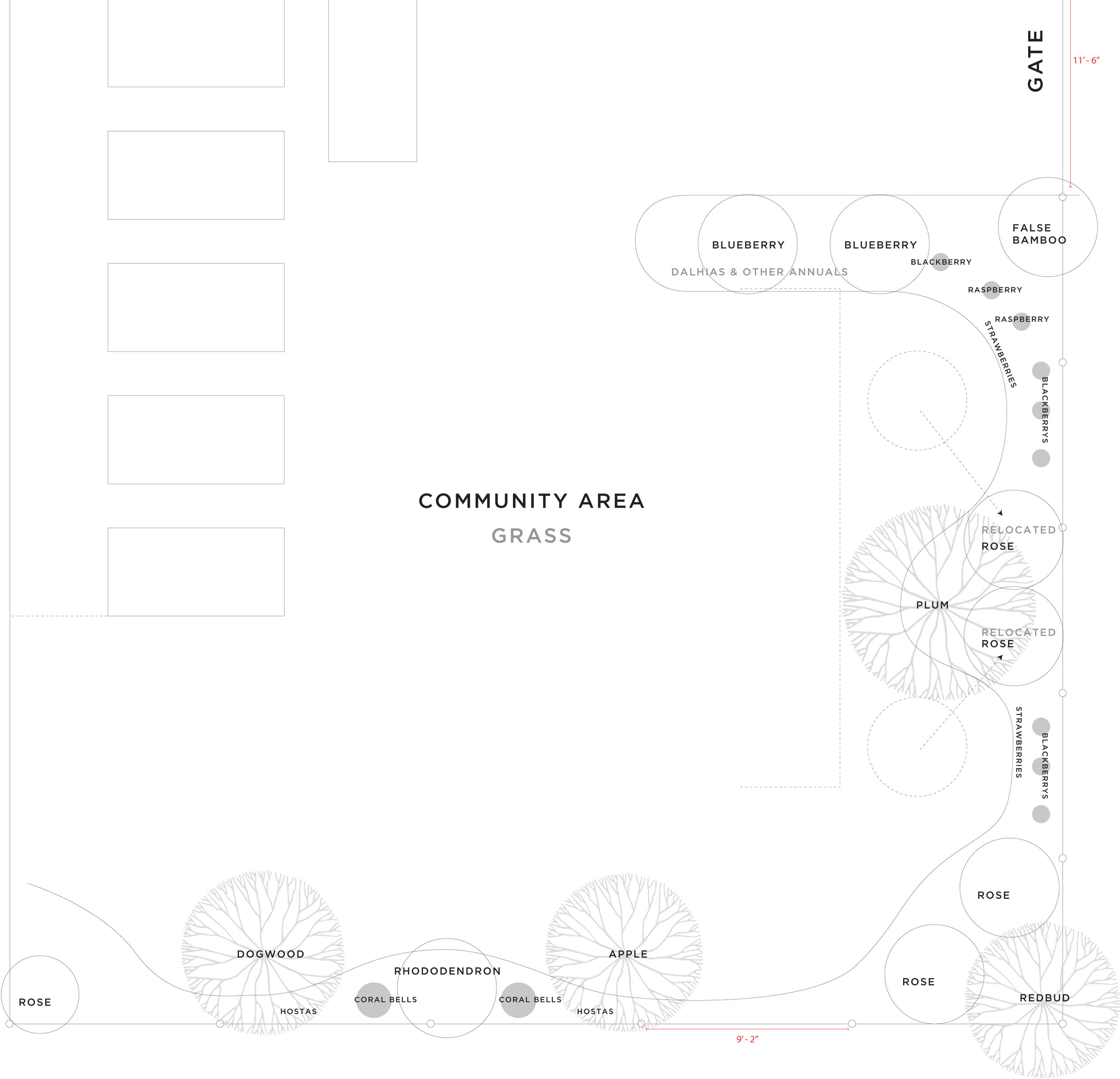 Community Area Plan