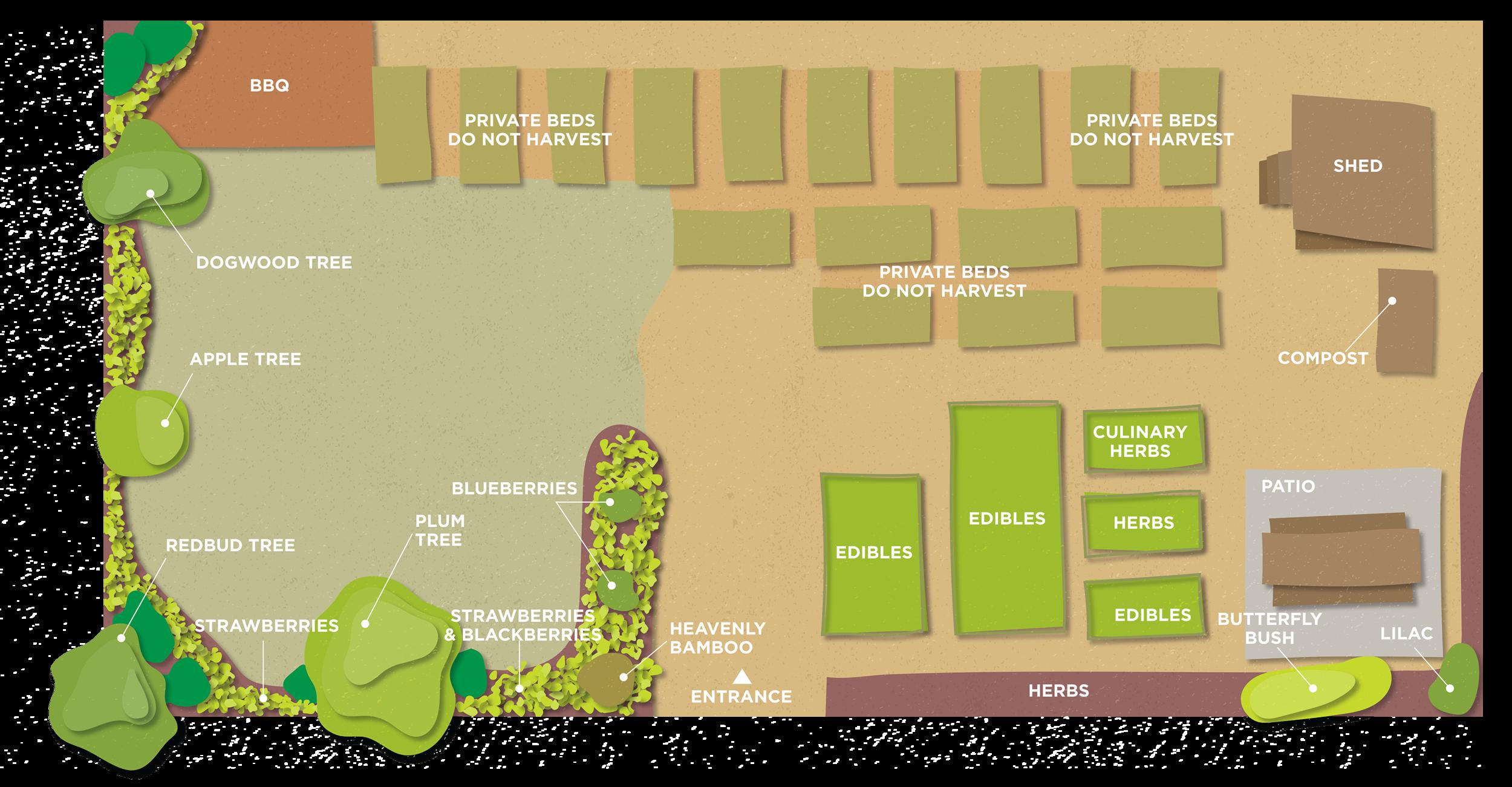 garden plan-2019B-01-REV.png