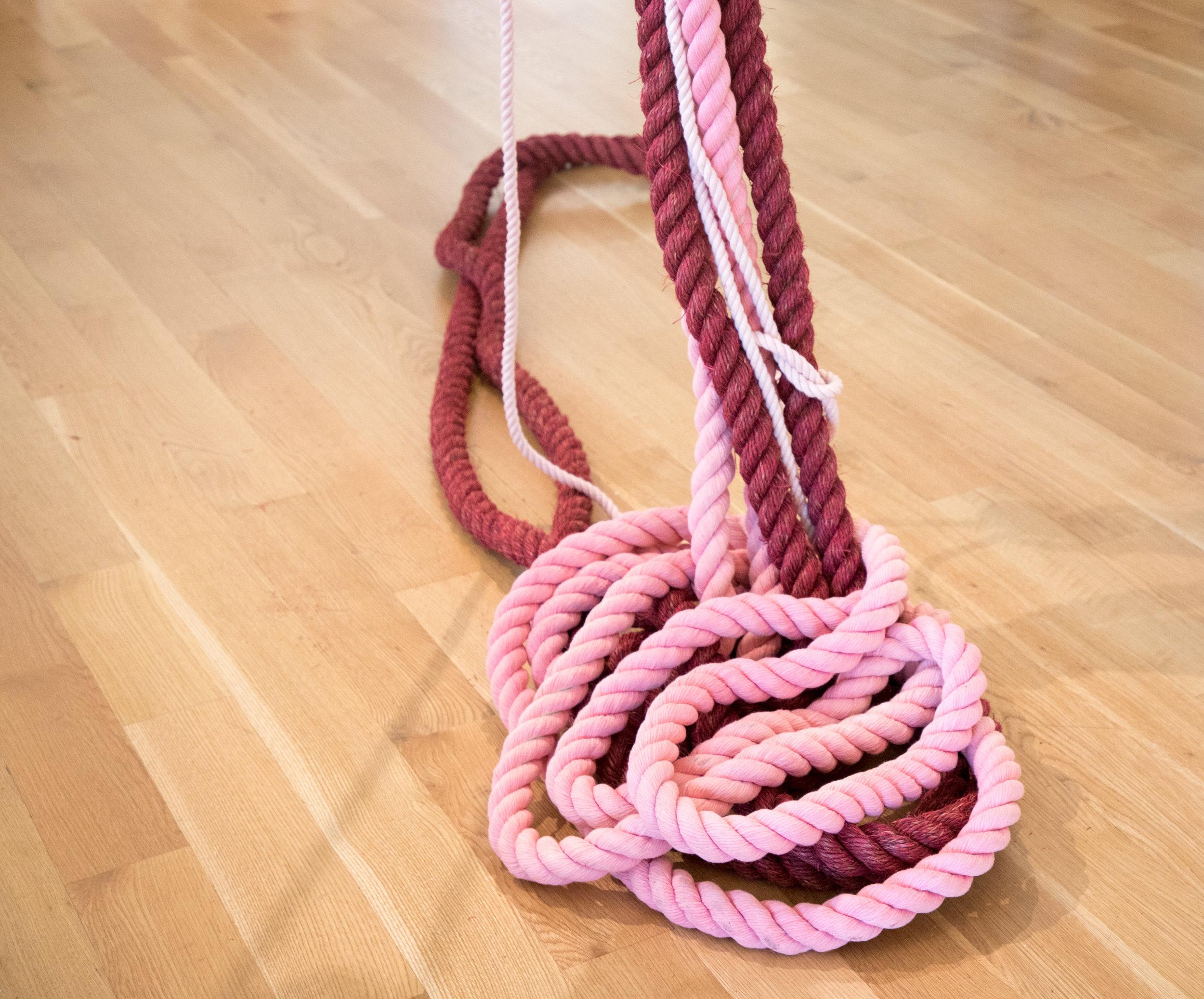 RopesPinksZarrow4.jpg